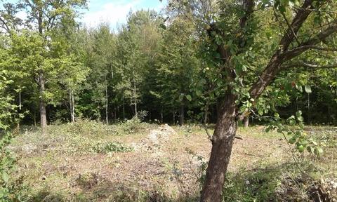 Продается земельный участок ИЖС в Белкино - Фото 4