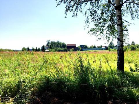 Участок 6,77сот. д. Сазонки, 39км. от МКАД по Дмитровскому шоссе - Фото 5