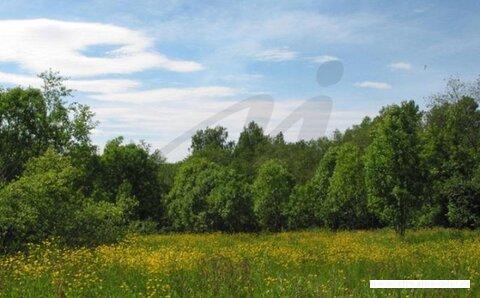 Продается земельный участок, Дудкино д, 9 сот - Фото 2