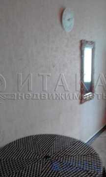 Аренда комнаты, м. Чернышевская, Ул. Пестеля - Фото 5