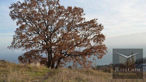 Продажа участка, Алупка, Виноградный спуск - Фото 1