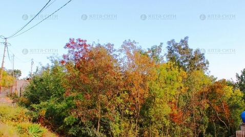 Земельный участок в Алупке 5 соток - Фото 2