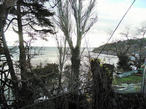 Уникальный участок в Алупке,10 соток, в 100 метрах от моря! - Фото 5
