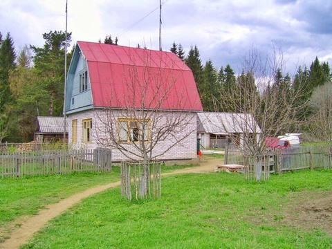 Продается усадьба, два дома, участок 50 соток - Фото 3