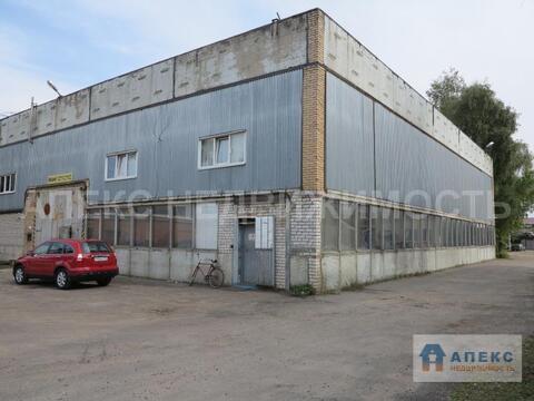 Аренда помещения пл. 900 м2 под производство, склад, Старая Купавна . - Фото 4
