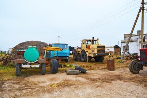 Фермерское хозяйство в Крыму - Фото 4