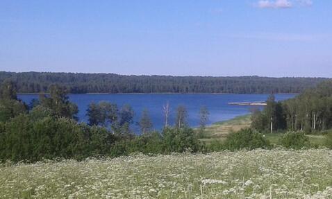 Чудесный участок рядом с озером Суходольским - Фото 2