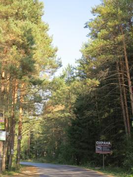 Красивый участок 10 соток у самого леса, магистральный газ, охрана. - Фото 4