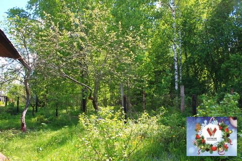 Теплая дача, сауна. природный газ. Рядом с лесом и озером - Фото 4