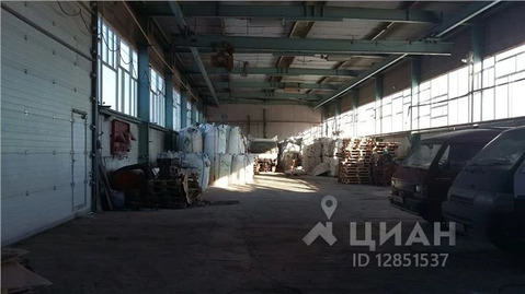Склад в Тюменская область, Тюмень ул. Еловая, 3 (9259.0 м) - Фото 2