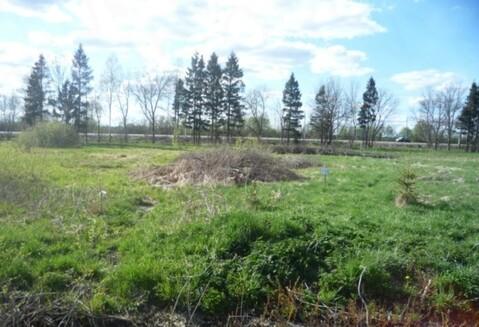 Продажа земельного участка в деревне Чечулино, Новгородского района - Фото 1