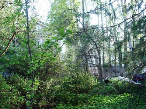 Участок 20 сот. в Валентиновке на Ярославском шоссе в 12 км. от МКАД - Фото 5