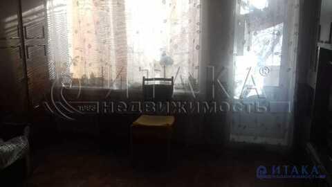 Продажа комнаты, м. Проспект Ветеранов, Ул. Солдата Корзуна - Фото 3