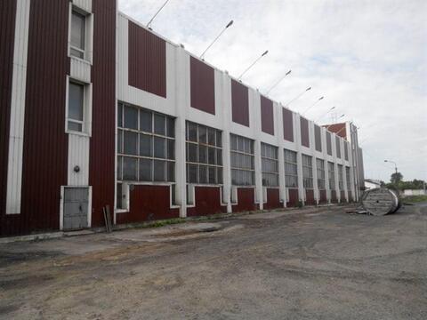 Сдам производственное помещение 1300 кв.м, м. Площадь А. Невского i - Фото 2