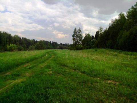 Крайний участок к лесу 15 соток в деревне с газом на берегу реки Москв - Фото 5