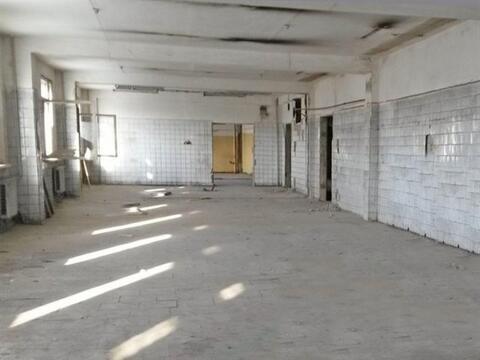 Сдам производственное помещение 515 кв.м, м. Площадь Ленина - Фото 4