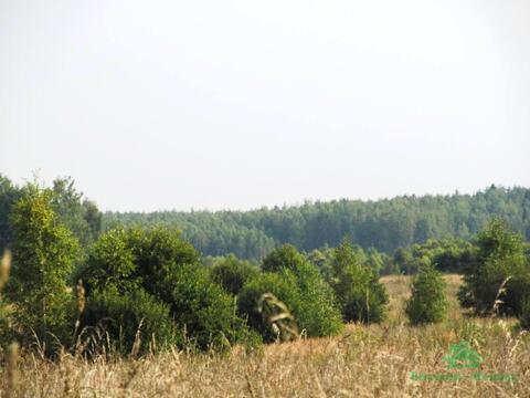 3,9 Га под лпх в д.Тельвяково - 95 км Щёлковское шоссе - Фото 5