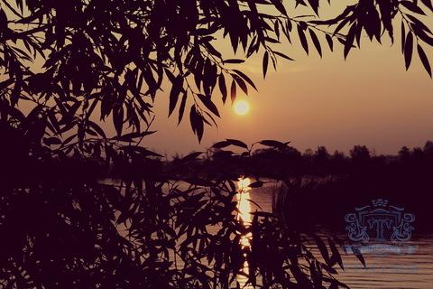 Сдаётся дача в Солнечногорском районе, Московской области - Фото 1