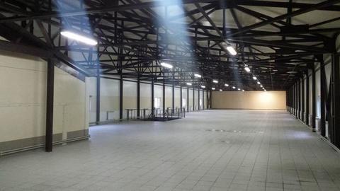 Аренда склада, Зеленоград, к1621 - Фото 5