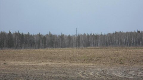 Продаётся земельный участок 5 га в Московской области - Фото 4