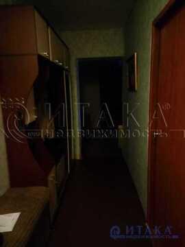 Аренда комнаты, м. Проспект Ветеранов, Красносельское ш - Фото 3