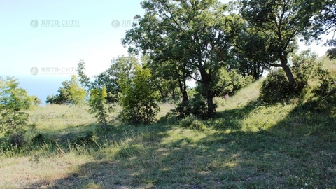Продается видовой участок 10 соток в Алупке - Фото 4