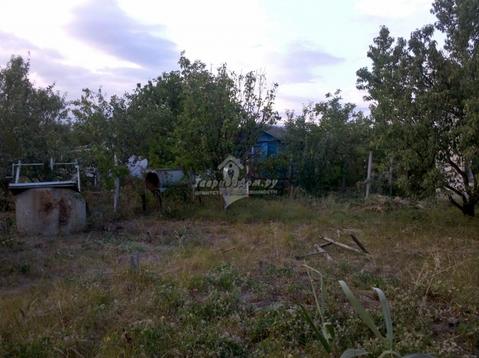 Продам дачный участок площадью 4.3 сотки, п. Орджоникидзе СПК Волна, . - Фото 5