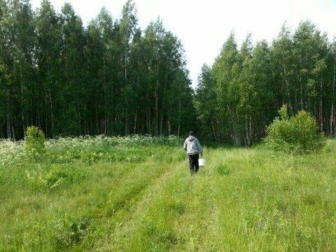 Зеленая Миля, Первомайский (Ясногорск) - Фото 2