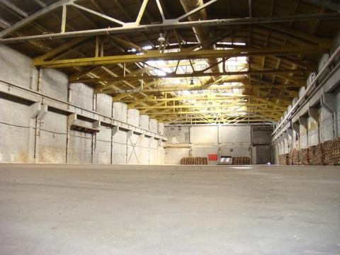 Сдам производственно-складские площади 15 538 кв.м. - Фото 1