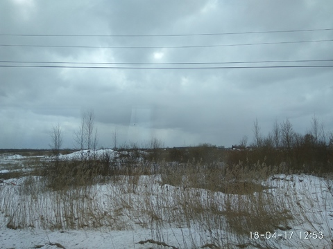 Продается земля пром назначения в п. Тельмана, Тосненский р-н - Фото 1