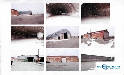 Продажа производственного помещения, Величаевское, Левокумский район