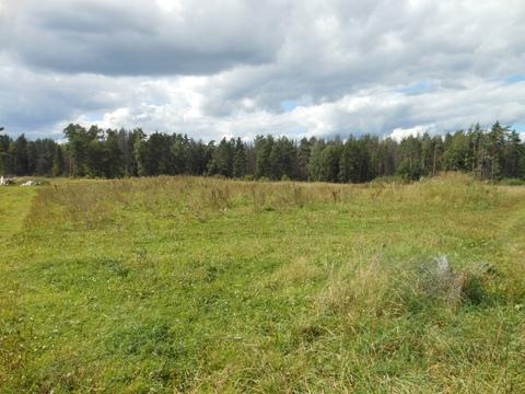4 земельных участка общей площадью 6,07 га - Фото 4