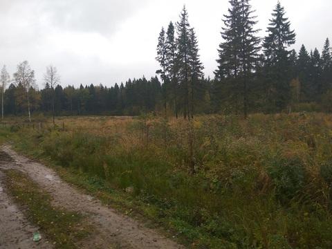 Продается участок, поселок Матросова - Фото 3