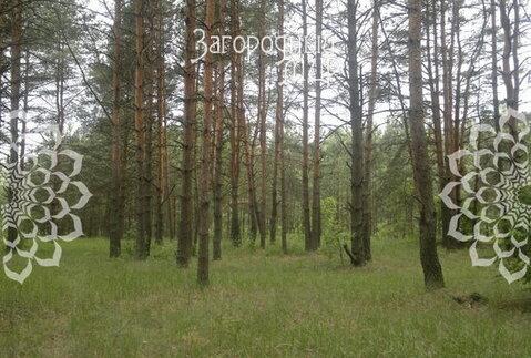 Щелковское ш, 60 км от МКАД, Мележа - Фото 3