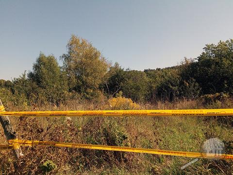 Продается земельный участок, с. Воскресеновка, ул. Ключевского - Фото 5