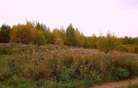 Продам земельный участок 26 соток в деревне Утечино. - Фото 2
