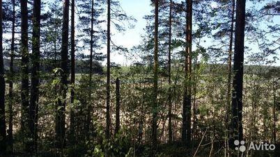 Продажа участка, Прудище, Калининский район, Ул. Прибрежная - Фото 2