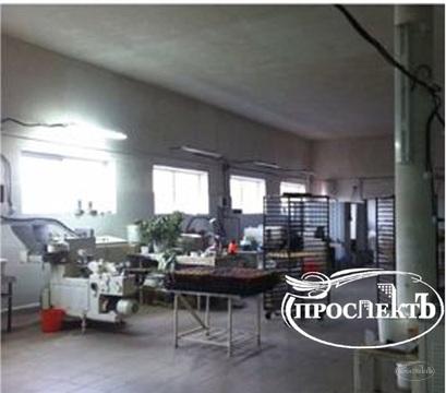 Торгово-производственное помещение с. Чистенькое, (ном. . - Фото 1