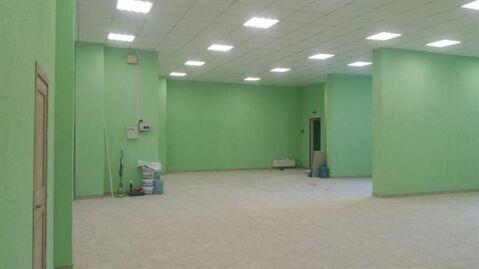 Сдам торговое помещение 220 кв.м, м. Новочеркасская - Фото 4