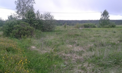 Участок 15 сот Егорьевское ш 56 км от МКАД Бисерово - Фото 4