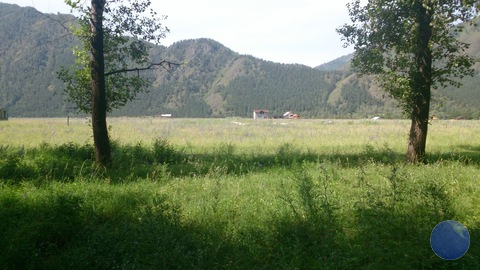 Продажа участка, Чемал, Чемальский район, Школьная - Фото 4