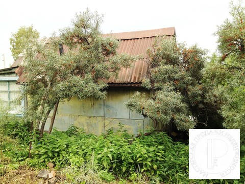 Предлагаем к продаже земельный участок 8,25 соток с домиком из бруса - Фото 3