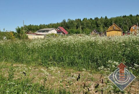 Земельный участок 8 соток в СНТ Горки у д. Большие Горки - Фото 4