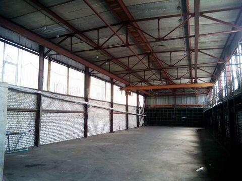 Сдам склад 507,2 кв.м. Руза , Волоколамское ш. 17 - Фото 2