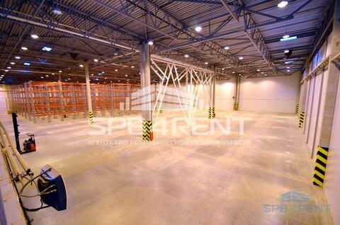 Аренда склада класса А 2950 кв.м. в Шушарах - Фото 5