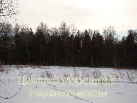 Участок, Волоколамское ш, 43 км от МКАД, Ефимоново, В окп. . - Фото 5