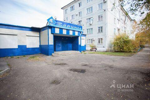 Продажа торгового помещения, Благовещенск, Ул. Пушкина - Фото 1