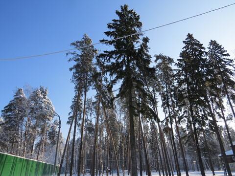 Участок в Малаховка-парке - Фото 1