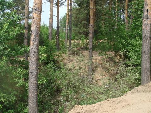 Продаю земельный уч. 19 соток в п. Улыбышево - Фото 4
