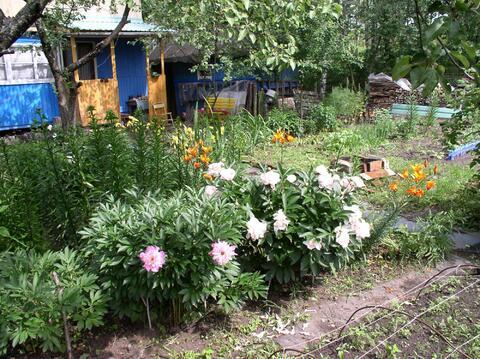 Дача с ухоженным участком в Московском р-не - Фото 2